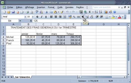 ajouter le sigle Euro à des calculs Excel